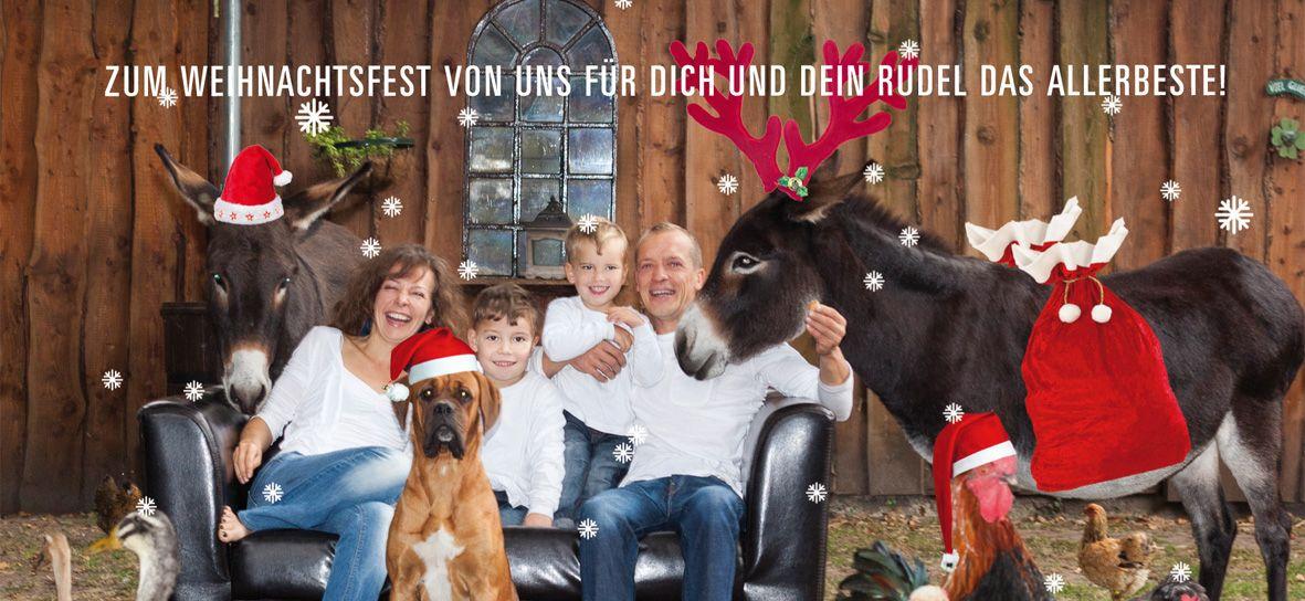 Hundepension-Oldenburg-Weihnachten 2017